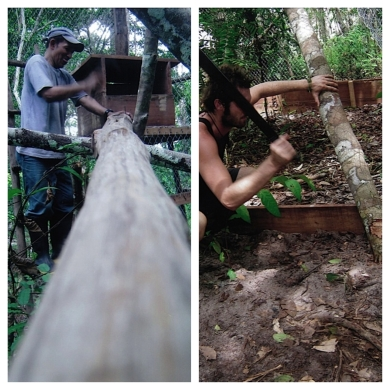 Building branches for monkeys to play on is super satisfying